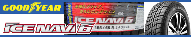 ICE NAVI6