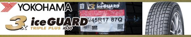 【型落ち】iceGUARD 3 PLUS
