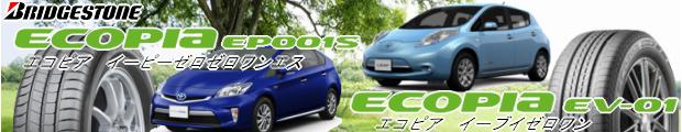 ECOPIA EP001S / EV01