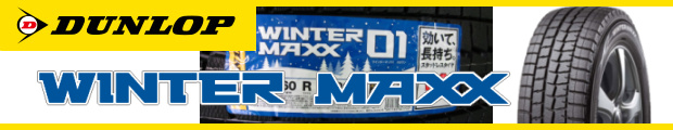 WINTER MAXX WM01